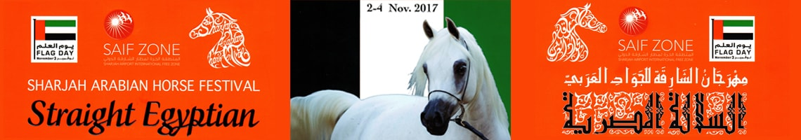 Sharjah Arabian Horse Festival (Straight Egyptian) 2018